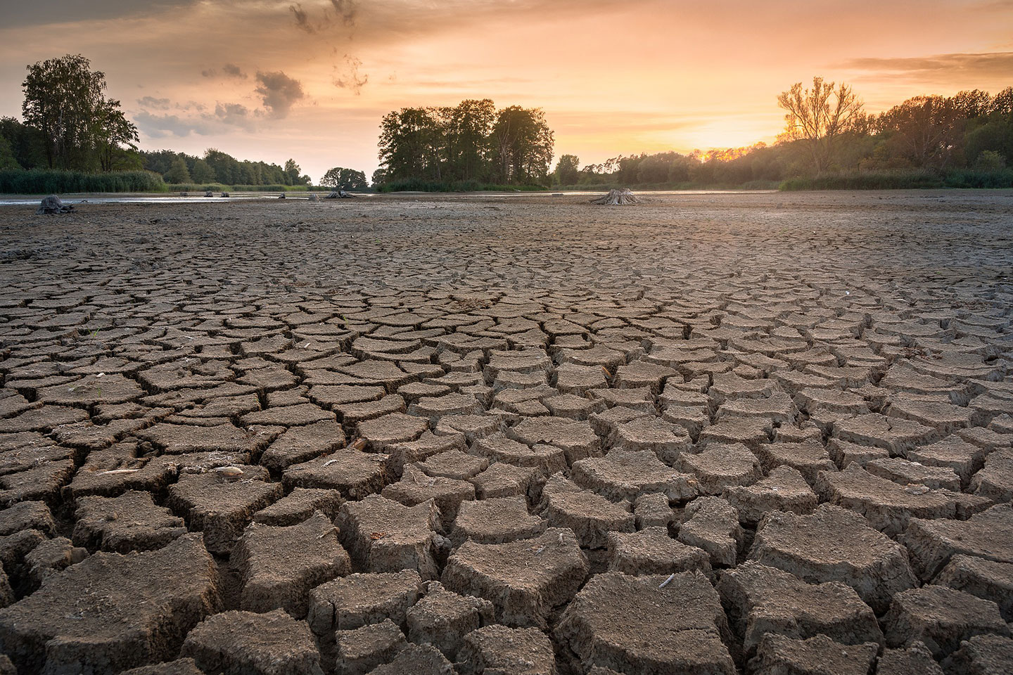 Food Security & Climate Change